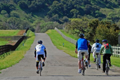 Daily Cycling Tour