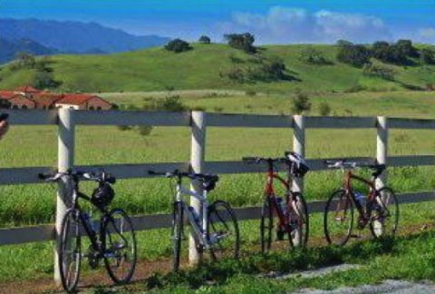 Cycling Santa Ynez Tour